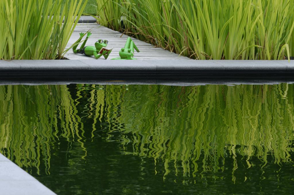 réaliser un étang de baignade